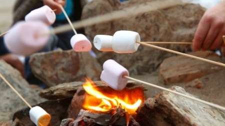 toasting marshmallows outside on fire